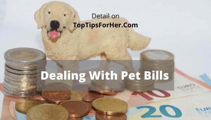 CareCredit Dealing With Pet Bills